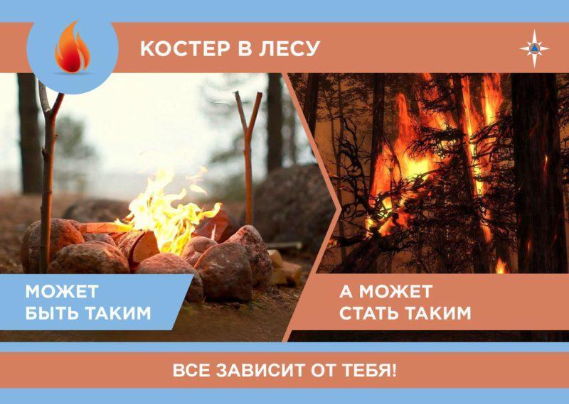 Пожарная безопасность в лесу